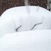 雪大好きでも嫌い・・・