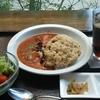 心斎橋駅すぐ!身体にやさしいカフェ、里山カフェでトマトカレー御膳。