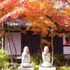 【永観堂の紅葉は別格の美しさ】秋が待ちきれない!色とりどりの紅葉写真をご紹介