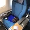 羽田→関空(ANA普通席)/93便は国際線仕様で、普通席料金でビジネスシートに乗れる