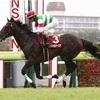 神戸新聞杯2020を過去傾向・注目馬・展開から予想