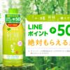 伊藤園「おーいお茶新緑」購入でLINEポイントが50P必ずもらえる!ソラチカルートにも