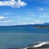 松原の海岸