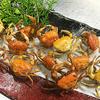 土佐の夏が来たぜよ! 穴子に、貝に、茄子のたたきが美味い!