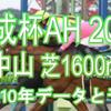 【京成杯AH 2021】過去10年データと予想