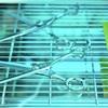 【紫外線殺菌効果】備蓄&ランニングコスト無し 広範囲を一気に除菌