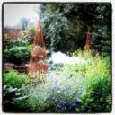 英国菜園日誌