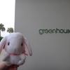 【ベトナムダナン旅行記】⑧ハイアットリージェンシー メインレストラン「green house」 ツアーのセットディナー