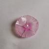 立体プラバン 撫子と桔梗 ( 試作品 )