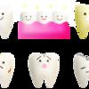 子供の歯、自分の歯、そしてペットの歯も大切に!