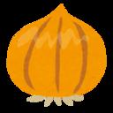 玉ねぎの畑ブログ