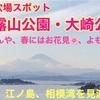 神奈川県おすすめ公園⑧〜「披露山公園」「大崎公園」