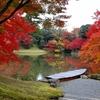 【紅葉】紅葉ピークの仙洞御所【当日枠の目安時間】
