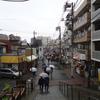 上野恩賜公園をお散歩 春分の日の、冷たい雨の中のソメイヨシノは……