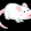 道具で生産性が向上する話(マウス編)