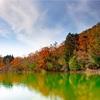 京都・鳴滝 - 京都の御釜 沢ノ池の紅葉