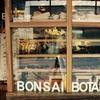 ブリスベンでおしゃれなカフェを探しているならBONSAI BOTANIKAがおすすめ!