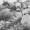 沖縄のユタとノロの違い!弾圧されてきたユタ