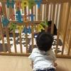 1歳になりました!:成長の記録その1