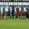 【レース予想】神戸新聞杯 2019 有力馬紹介 〜有力馬の影に潜む、穴馬を探せ〜