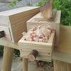 のぶちゃん先生の木工教室 8月の日程です