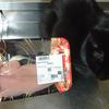 今日の黒猫モモ&白黒猫ナナの動画ー873