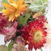 七彩菊とスペアミント、レモングラスのアレンジティー
