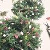 クリスマスリース:ご自分用とプレゼント