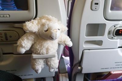 【タイ旅行記#2】タイ国際航空の機内は18℃クーラー直撃並に寒いから、上着とか足元温める物持っていったほうがいいよ!