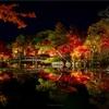 京都・東山 - 永観堂の紅葉ライトアップ