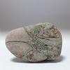 糸魚川紋様石vol.19「伊勢海老の やわらかいWay of life」奇石という奇跡