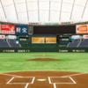 東京ドーム初心者のための楽しく野球観戦する方法