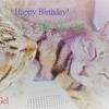 Happy Birthday! An Gel