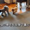 2021.8.27  【皆んな、お帰り‼️】 Uno1ワンチャンネル宇野樹より