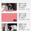 譲渡型保護猫カフェしあわせにゃん家さんがYoutubeチャンネルを開設されました!
