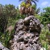 2017年5月 聖なる島を旅する 宮古島その四 - 石庭と日本最南端の神社と(番外)沖縄本島、久高島