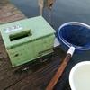 9月17日 椎の木湖 ヘラブナ釣り たまにはいい思い