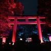 「下鴨神社 糺の森の光の祭」 チームラボがアート空間に演出