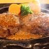 【車中泊日本一周17日目】静岡名物さわやかのハンバーグを食す!【愛知〜静岡】