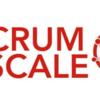 めっちゃ美しいけど危険な刃: Scrum@Scaleガイドを読んで
