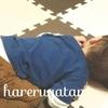 【息子がインフルエンザに感染】現在保育園で大流行中!!!