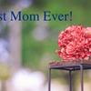 """""""わたしの思うお母さん""""という都合の良い握りしめをやめることのデカすぎる恩恵。【今日は母の日♪】"""