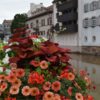 パリ発ストラスブール、ナンシー、ランス世界遺産巡りに最良の行き方
