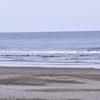 ウインターサーフ物語。「羽音をさせない大きな翼に見守られ潮騒だけの太平洋の片隅で波にゆられた寒風ながれる半時間は唯一無二の半時間」の巻。