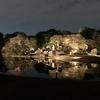 今年も六義園の「紅葉と大名庭園のライトアップ」の季節がやってきました。