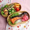 #302 鮭の味噌漬け焼き弁当