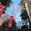 大田原神社の太子祭
