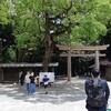 4ヶ月でやっとお宮参りに行けました!明治神宮はやっぱり良い。