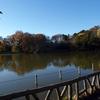 暇人と善福寺公園と