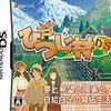 『箱庭生活ひつじ村DS』結婚後におすすめなプレイスタイル
